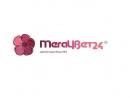 Megacvet24